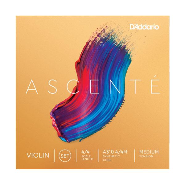 AscenteLG